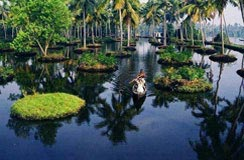 Kerala Tour India